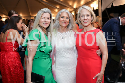 Susi Larsen, Barbara Hawthorn, Lori Carbonneau. Photo by Tony Powell. 2019 McLean Project for the Arts Spring Benefit. The Falls. May 16, 2019