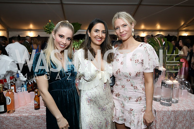Crystal Martin, Nikki Yazdanian, Rachel Grinney. Photo by Tony Powell. 2019 McLean Project for the Arts Spring Benefit. The Falls. May 16, 2019