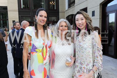 Sarah Kimsey, Barbara Hawthorn, Grace Liu. Photo by Tony Powell. 2019 McLean Project for the Arts Spring Benefit. The Falls. May 16, 2019