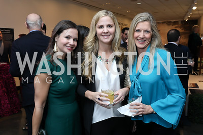 Susan Burke, Michelle Maddux, Denise Prince. Photo by Tony Powell. 2019 Washington Winter Show. Katzen Center. January 10, 2019