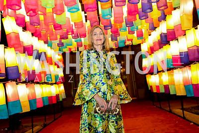 """Dame Jillian Sackler. Photo by Tony Powell. 2019 """"Art & Seoul."""" Freer Sackler. November 22, 2019"""