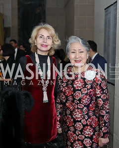 "Global Chair Sana Sabbagh, Honorary Chair Young Yang Chung. Photo by Tony Powell. 2019 ""Art & Seoul."" Freer Sackler. November 22, 2019"