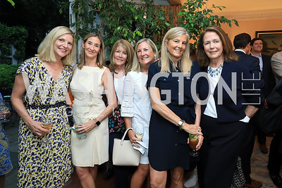 Lee Prince, Jackie Dunn, Ginny Grenham, Eileen McGrath, Sissy Yates, Ginger Pape. Photo by Tony Powell. Reception for Bill Weld. Tobin Residence. June 18, 2019