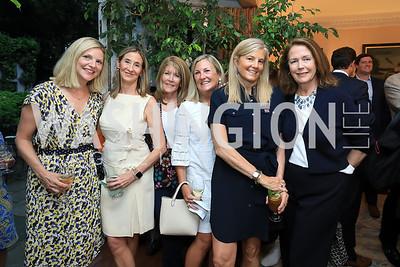 Lee Prince, Jackie Dunn, Ginny Grenham, Eileen McGrath, Sissy Yates, Ginger Pape. Photo by Tony Powell. Reception for Bill Weld. Tobin Residence. June 18, 2019