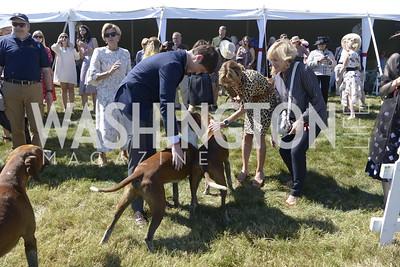Orange County hounds,  NSLM 2019 Polo Classic Great Meadow Sep 15 2019 Photo by Nancy Milburn Kleck