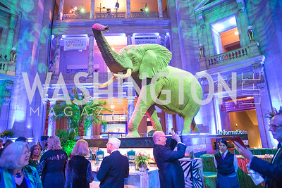Photo by Alfredo Flores. National Museum of Natural History David H. Koch Hall of Fossils - Deep Time Members Preview Gala. Smithsonian National Museum of Natural History. June 6, 2019