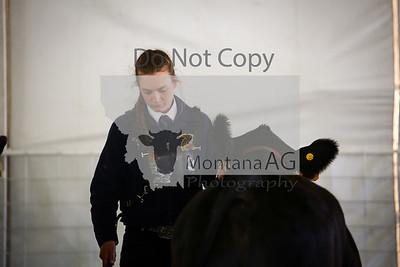 montanaag-14