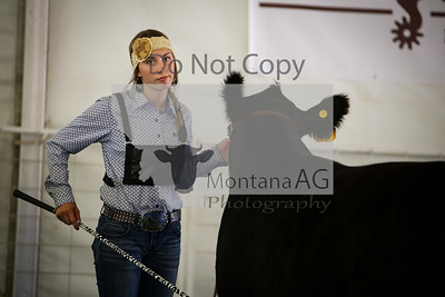 montanaag-31