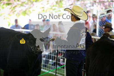 montanaag-22