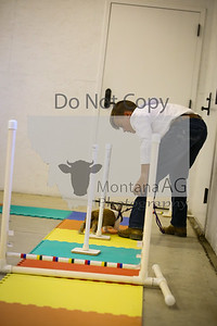 montanaag-16