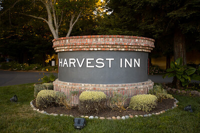 Festival Live! at Harvest Inn