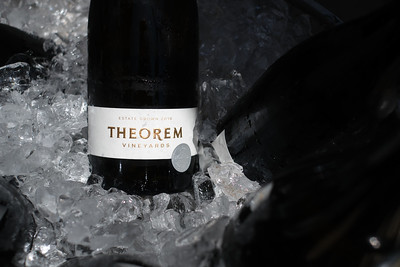 Vintner's Luncheon at Theorem Vineyards
