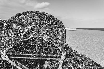 Lobster nets