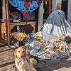 Tobias Comfort Dog - Dayton, Ohio