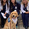 Gabriel Comfort Dog making friends with Del Sol Medical Center Staff- El Paso