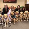 LCC K-9 Comfort Dogs at Del Sol Medical Center- El Paso, Texas