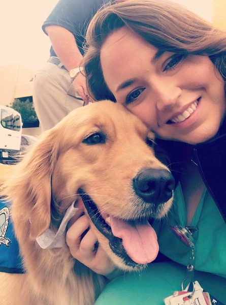 Gabriel Comfort Dog making friends with Del Sol Medical Center Staff- El Paso