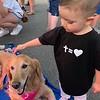 Cubby Comfort Dog Comforting El Paso - El Paso, Texas - 2nd Deployment