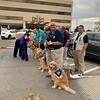 LCC K-9 Comfort Dogs Comforting Staff at Del Sol Medical Center - El Paso