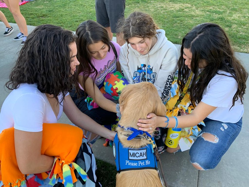 LCC K-9 Comfort Dog Micah at Mountain View Elementary School Park being present for those affected by the Saugus HS Shooting- Santa Clarita, CA