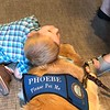Phoebe Comfort Dog with a Friend