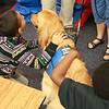 Elijah Comfort Dog with Friends at Blackshear Magnet Elementary