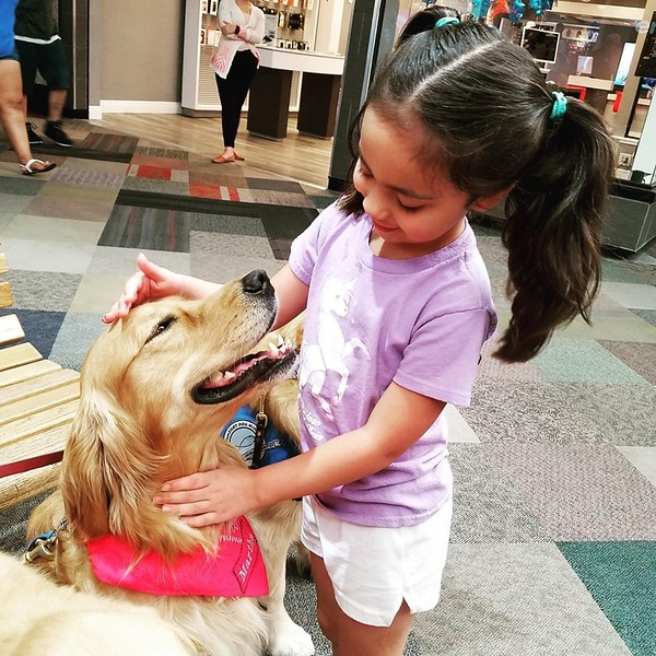 Martha Comfort Dog with Friend at Music City Mall