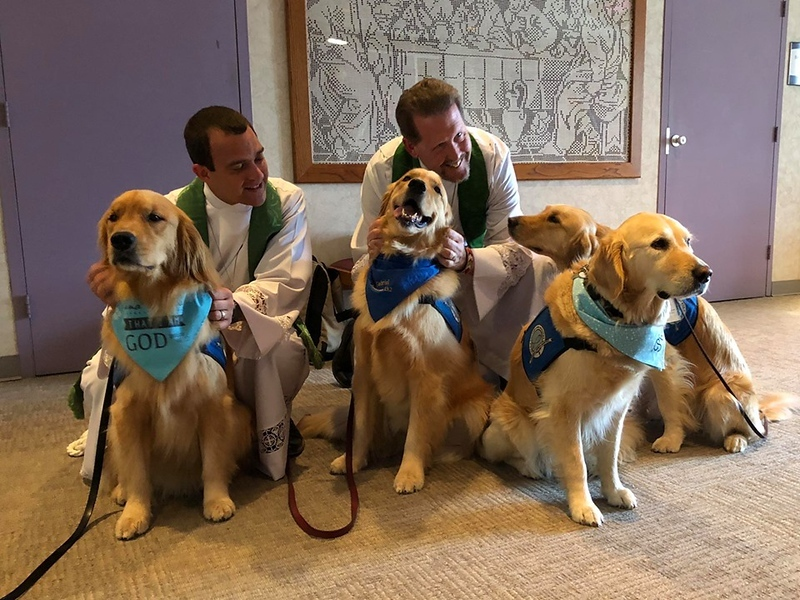 Comfort Dogs with Grace Lutheran Church Pastors