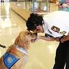 LCC K-9 Comfort Dog at The University of Texas Permian Basin