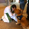 Elijah Comfort Dog Serving in Midland, Texas