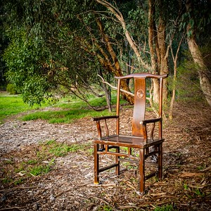 The Chair - an unusual find