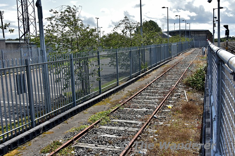 The disconnected cement store siding at Thurles behind the Down Platform. Mon 05.08.19