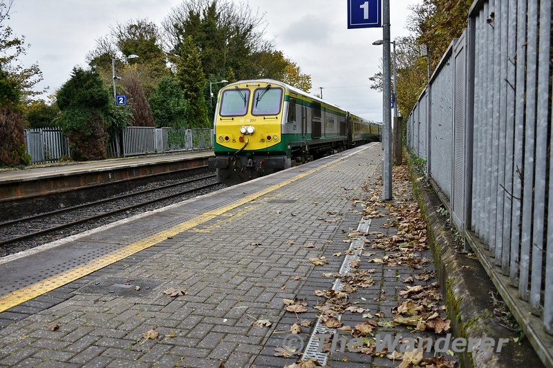The leaf fall season is now in full swing. Here we see 220 arriving at Portlaoise with the 1300 Heuston - Cork with MKIV set 4005. Unusually set 4005 was only operating as a 7pce MKIV set. The first time a 7MKIV set has operated in a long time. Fri 01.11.19