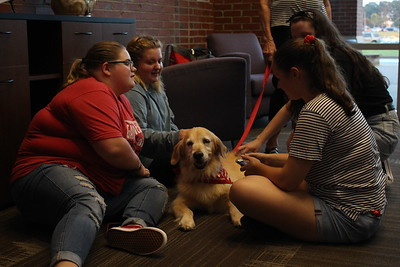 Students having fun interacting with therapy dogs at PAWS awhile 09/10/19