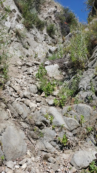 Looking up the steep chute from the left route from the previous bifurcation