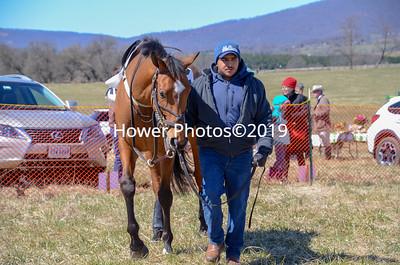 2019 Piedmont Point to Point-4