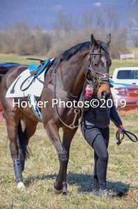 2019 Piedmont Point to Point-3