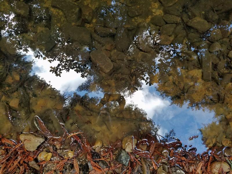 Selfie (Reflection)