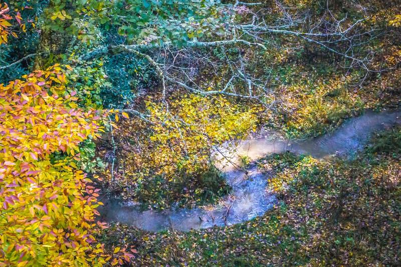 views along virginia creeper trail during autumn