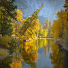 Fall in Yosemite Valley