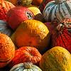 Bright Shiny Pumpkins