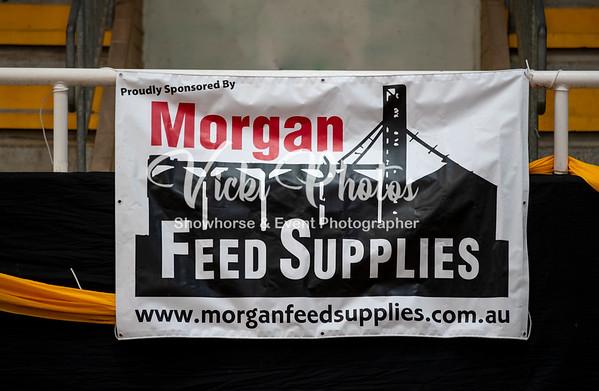 2019 Morgan Feed Supplies WA Arabian Championships - 16th & 17th March.