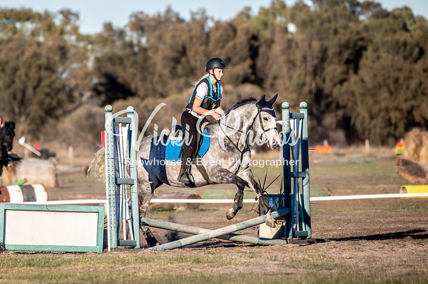 Milne Feeds Oakford Equestrian in the Park - 3.6.2019
