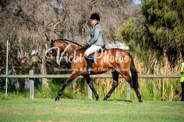 Open Show Horse & Dressage Day - 10th March 2019