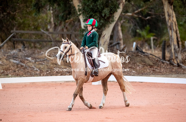Orange Grove  Show Jumping & Dressage Series Event 2 - 14th April 2019