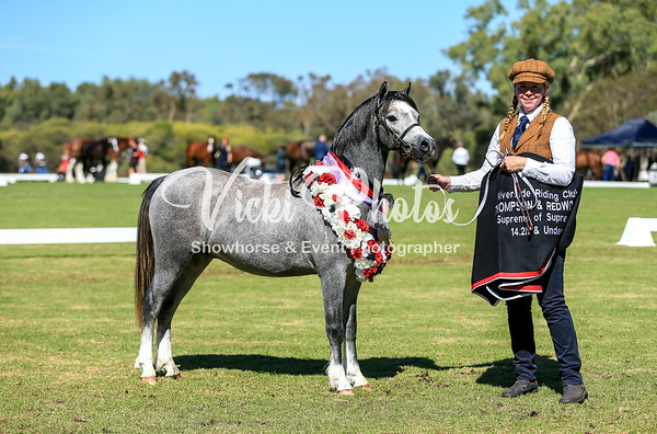 Riverside Riding Club Easter Breed Show - 21st April 2019