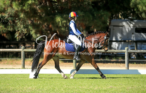 Saddles Plus Interschool & CT Championships - 24th,26th & 28th April 2019