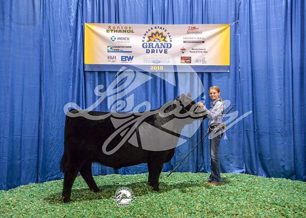 Jr. Cattle