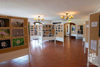 Visual Arts Exhibition