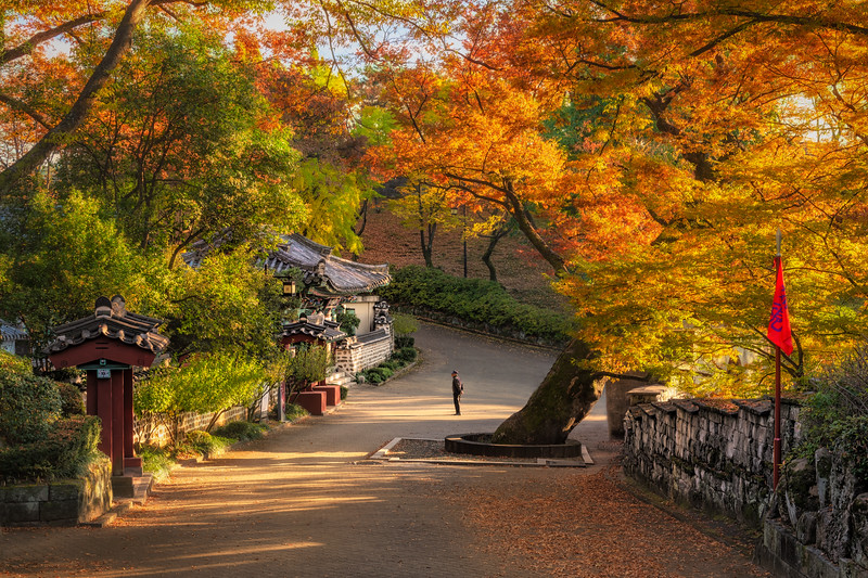 Autumn inside Jinju Castle